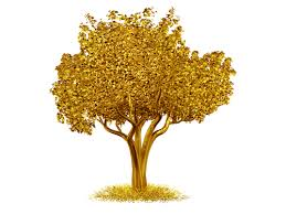 There's Gold In Them Thar Trees!