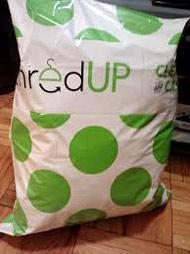 ThreadUp Polka-dot Bag